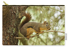Carry-all Pouch featuring the photograph Douglas Squirrel by Sean Griffin