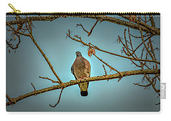 Dove #g2 Carry-all Pouch by Leif Sohlman