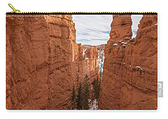 Down Navajo Rim Trail Carry-all Pouch