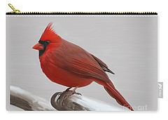 Carry-all Pouch featuring the painting Downy Winter Male by Rand Herron