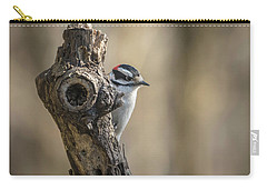 Downy Woodpecker Img 1 Carry-all Pouch by Bruce Pritchett