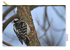 Carry-all Pouch featuring the photograph Downy Woodpecker by Living Color Photography Lorraine Lynch