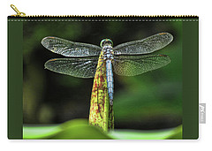 Dragonfly 1 Carry-all Pouch