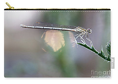Carry-all Pouch featuring the photograph Dragonfly On Leaf by Michal Boubin