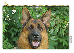 Carry-all Pouch featuring the photograph Drake by Sandy Keeton