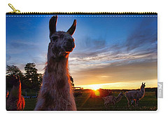 Drama Llamas Carry-all Pouch