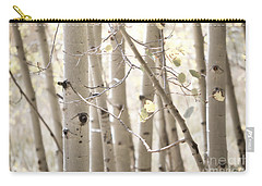 Dreamy Aspen Woodland Carry-all Pouch by Andrea Hazel Ihlefeld