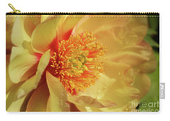 Carry-all Pouch featuring the photograph Drenched In Sunshine by Rachel Cohen