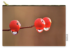 Droplets Carry-all Pouch by Nancy Landry