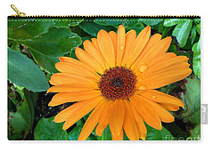Droplets On A Daisy Carry-all Pouch