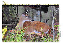 Carry-all Pouch featuring the photograph Drowsy Deer by Al Powell Photography USA