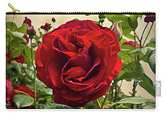 Dublin Bay Climbing Rose Carry-all Pouch