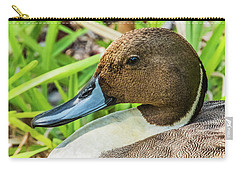 Carry-all Pouch featuring the photograph Male Northern Pintail In Key West by Bob Slitzan