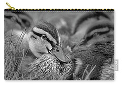 Carry-all Pouch featuring the photograph Ducklings Cuddling Bw by Susan Candelario
