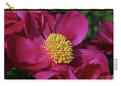 Dusted In Peony Pollen Carry-all Pouch by Rachel Cohen