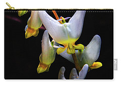 Dutchmans Breeches Carry-all Pouch by Barbara Bowen
