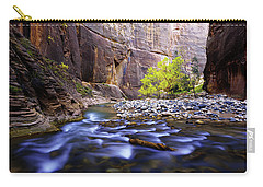 Carry-all Pouch featuring the photograph Dynamic Zion by Chad Dutson