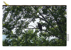 Carry-all Pouch featuring the photograph Eagle At Codorus by Donald C Morgan