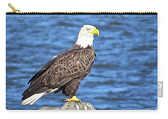 Carry-all Pouch featuring the photograph Eagle At East Point  by Nancy Patterson