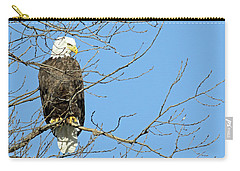 Eagle Carry-all Pouch by Brook Burling