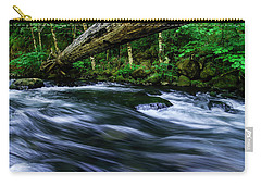 Eagle Creek Rapids Carry-all Pouch