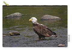 Carry-all Pouch featuring the photograph Eagle Deep In Thought by Debbie Stahre
