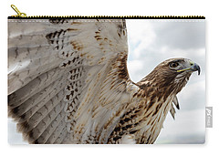 Eagle Going Hunting Carry-all Pouch