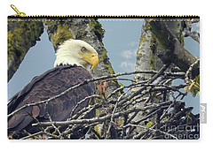 Carry-all Pouch featuring the photograph Eagle In Nest by Rod Wiens