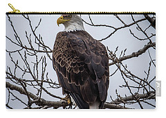 Carry-all Pouch featuring the photograph Eagle Perched by Paul Freidlund
