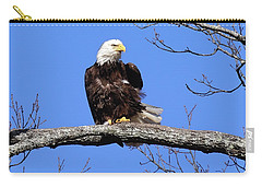 Eagle Ruffled Feathers  Carry-all Pouch