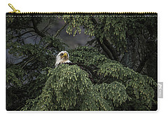 Eagle Tree Carry-all Pouch by Timothy Latta