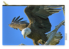 Eagle's Balance Carry-all Pouch