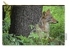 Early Morning Coyote In Maine Carry-all Pouch