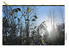 Early Morning Sun Carry-all Pouch by Andy Walsh