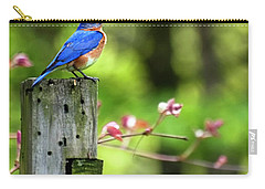 Eastern Bluebird Carry-all Pouch by Christina Rollo