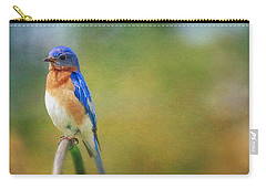 Carry-all Pouch featuring the photograph Eastern Bluebird Painted Effect by Heidi Hermes