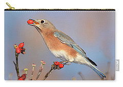 Eastern Bluebird With Berry Carry-all Pouch by Alan Lenk