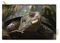 Eastern Box Turtle 4 Carry-all Pouch by Mike Eingle