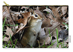 Eastern Chipmunk Carry-all Pouch by Doris Potter