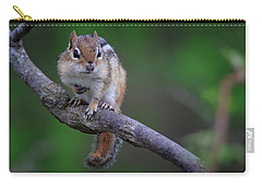 Carry-all Pouch featuring the photograph Eastern Chipmunk by Gary Hall