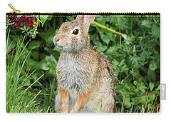 Eastern Cottontail Carry-all Pouch by Ricky L Jones