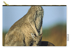 Wilsons Promontory Carry-All Pouches