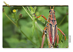 Eastern Lubber Grasshopper  Carry-all Pouch by Saija  Lehtonen