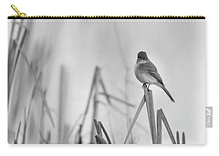 Carry-all Pouch featuring the photograph Eastern Phoebe 2017 by Thomas Young