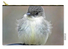 Eastern Phoebe 4 Carry-all Pouch