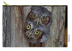 Eastern Screech Owl Chicks Carry-all Pouch