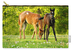 Easy Pickins Carry-all Pouch