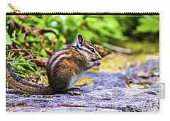 Carry-all Pouch featuring the photograph Eating Chipmunk by Jonny D