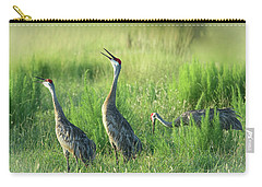 Sandhill Cranes In A Misty Meadow  Carry-all Pouch