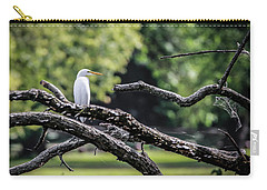 Egret Able Carry-all Pouch by Ray Congrove
